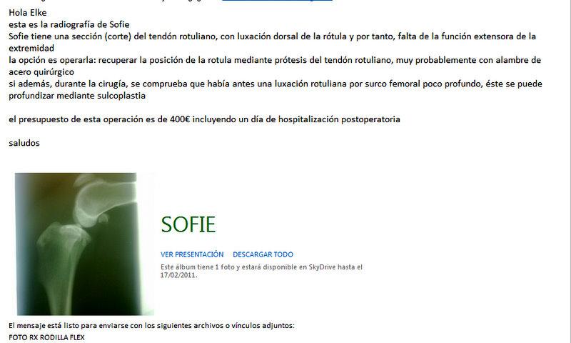 operatiekosten voor de knie van sofie  eur 400